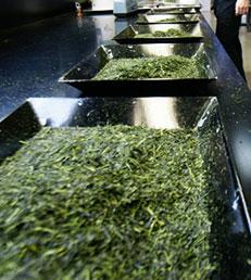日本茶インストラクターが厳選した茶葉を使用